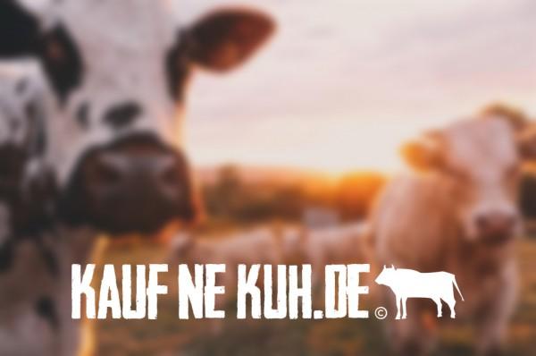 kaufnekuh-blog